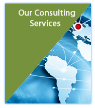 Our-Consulting-Services